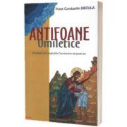 Antifoane omiletice. Meditatii la Evangheliile Duminicilor de peste an, Constantin Valer Necula, Agnos