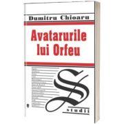 Avatarurile lui Orfeu, Dumitru Chioaru, UNIVERS