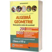 Algebra, geometrie, pentru clasa a VII-a. Teme pentru centrele de excelenta (Editia a IX-a)