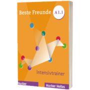 Beste Freunde A1.1 Intensivtrainer mit Audios online