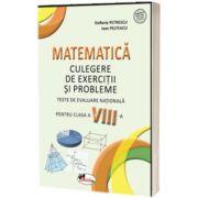 Matematica . Teste de evaluare nationale pentru clasa a VIII-a
