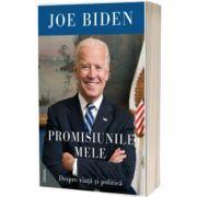 Promisiunile mele. Despre viata si politica, Joe Biden, NEMIRA