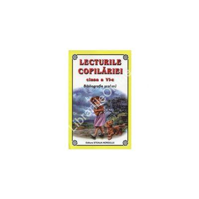 Lecturile copilariei. Bibliografie scolara pentru clasa a VI-a