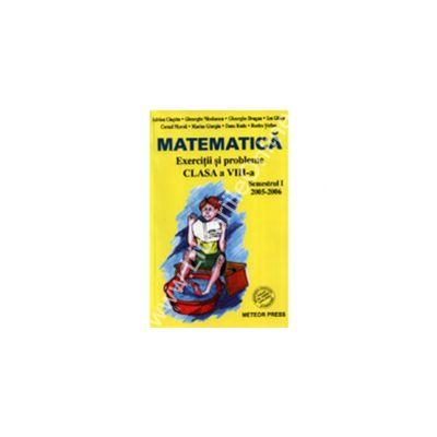 Matematică Exerciţii şi probleme pentru cla VIII-a, semestrul I
