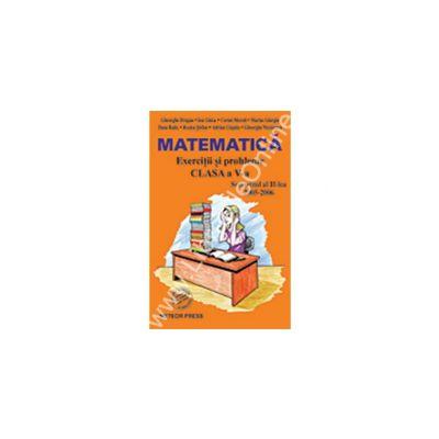 Matematică Exerciţii şi probleme pentru clasa a V-a, semestrul al II-lea