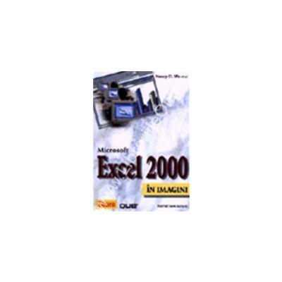 Excel 2000 in imagini