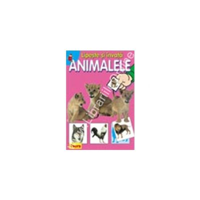 Lipeste si invata animalele 4