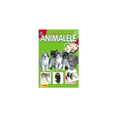 Lipeste si invata animalele 1