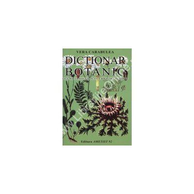 Dictionar Botanic. Cele mai cunoscute plante din flora Romaniei