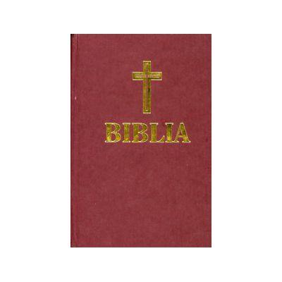 Biblia  (mica)