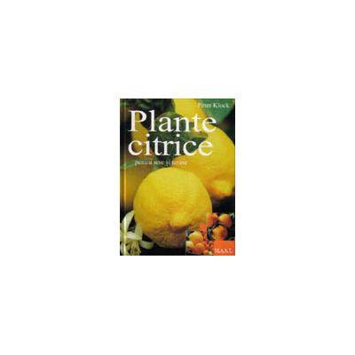 Peter Klock, Plante citrice