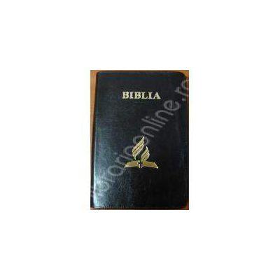 Biblia - format mare