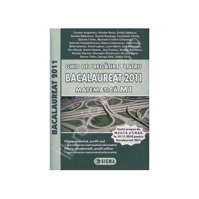 Bacalaureat 2011 matematica M1. Ghid de pregatire
