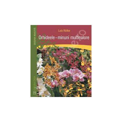 Orhideele - minuni multicolore