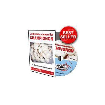CD - Cultivarea ciupercilor Champignon. O afacere cu amortizare rapida