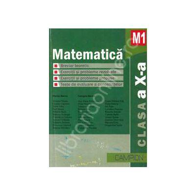 Matematica M1 clasa a X-a (Culegere de probleme)