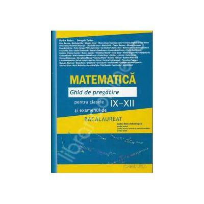 Bacalaureat Matematica 2013. Ghid de pregatire pentru clasele IX-XII (Albastra)