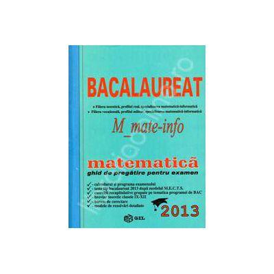 Bac 2013 matematica, M_mate-info. Bacalaureat 2013 matematica ghid de pregatire pentru examen