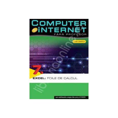 Computer si internet fara profesor  volumul 7