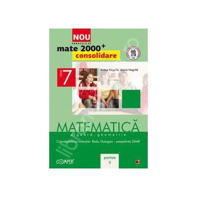 Mate 2000 pentru clasa a VII-a. Partea a II-a, CONSOLIDARE. Matematica, algebra, geometrie