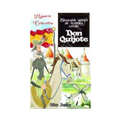 Minunatele ispravi ale vestitului cavaler. Don Quijote