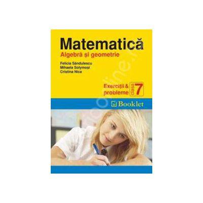 Matematica (Algebra si geometrie). Exercitii si probleme pentru clasa a 7-a