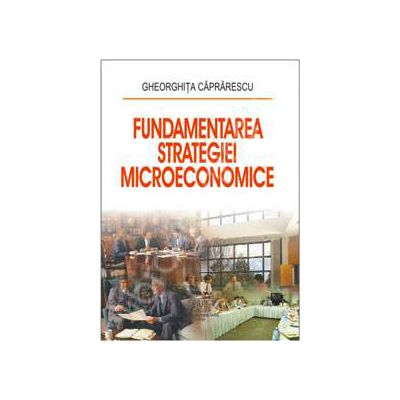 Fundamentarea strategiei microeconomice