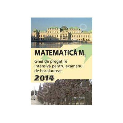 Matematica M1, BACALAUREAT 2014. Ghid de pregatire intensiva