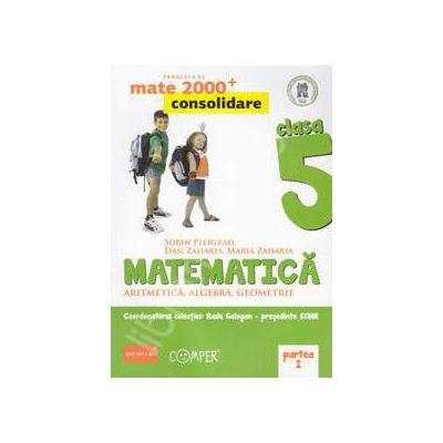 Mate 2000 pentru clasa a V-a. Partea I, CONSOLIDARE. Matematica - Aritmetica, algebra, geometrie. Editia a II-a revizuita