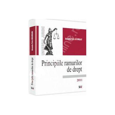 Principiile ramurilor de drept