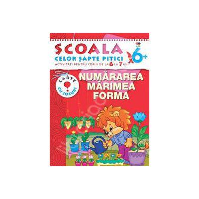 Numararea, marimea, forma. Activitati pentru copiii de la 6 la 7 ani - carte cu jocuri