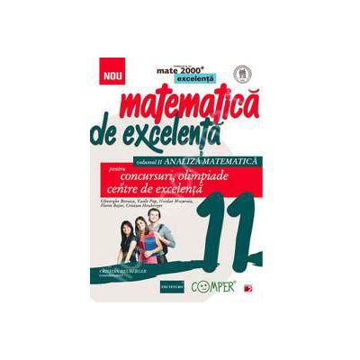 Matematica de excelenta (Mate 2000), pentru concursuri, olimpiade si centrele de excelenta, clasa a XI-a. Volumul II - ANALIZA MATEMATICA