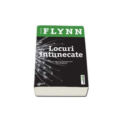 Gillian Flynn, Locuri intunecate
