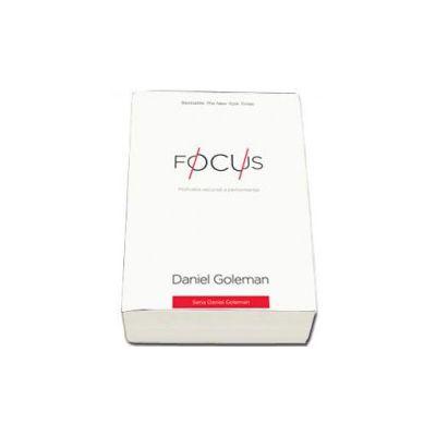 Daniel Goleman, Focus Motivatia ascunsa a performantei