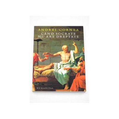 Andrei Cornea, Cand Socrate nu are dreptate