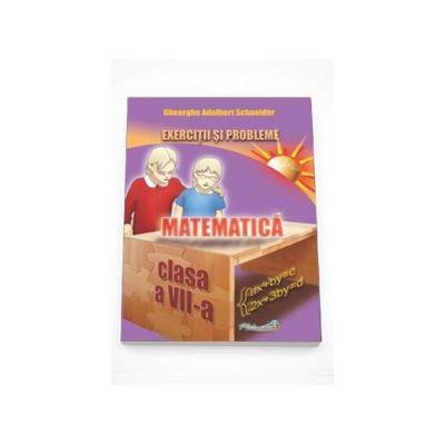 Adalbert Gheorghe Schneider - Matematica exercitii si probleme pentru clasa a VII-a