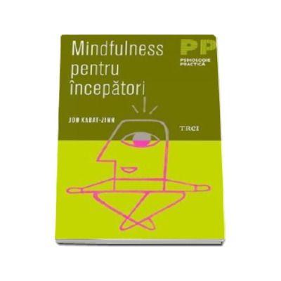 Jon Kabat Zinn, Mindfulness pentru incepatori