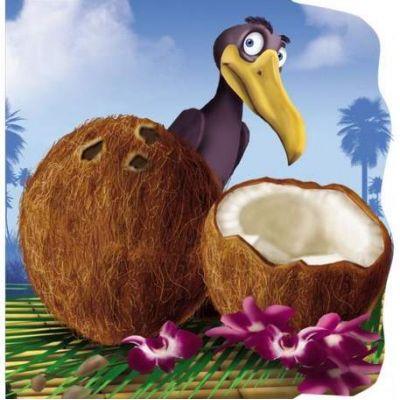 Nuca de cocos. Primii pasi - Varsta recomandata 1-3 ani