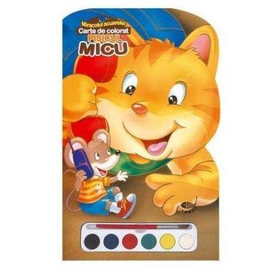 Pisicul Micu. Miracolul acuarelei - Varsta recomanda 4-8 ani