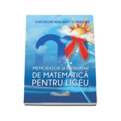 Gheorghe Adalbert Schneider, Memorator si indrumar de matematica pentru liceu