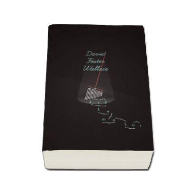 David Foster Wallace, Matura sistemului