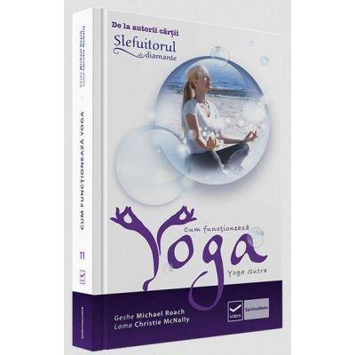 Geshe Michael Roach, Cum functioneaza Yoga