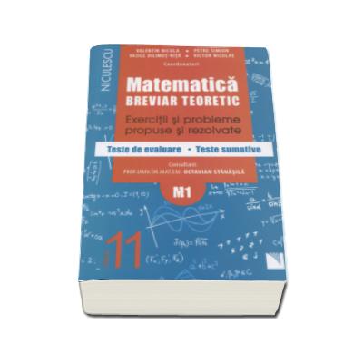 Petre Simion - Matematica clasa a XI-a M1. Breviar teoretic cu exercitii si probleme propuse si rezolvate, teste de evaluare, teste sumative - Editie 2016