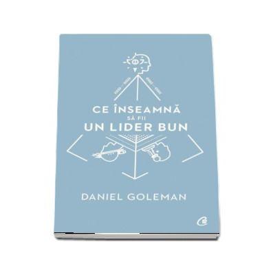 Ce inseamna sa fii un lider bun (Daniel Goleman)