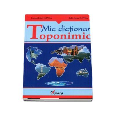 Irinel Lucian Ilinca, Mic dictionar toponimic