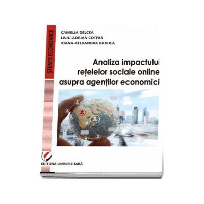 Camelia Delcea, Analiza impactului retelelor sociale online asupra agentilor economici