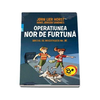 Jorn Lier Horst, Operatiunea Nor de Furtuna - Biroul de investigatii numarul 2
