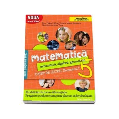 Sorin Peligrad, Matematica 2000. Aritmetica, algebra, geometrie. Caiet de lucru, pentru clasa a V-a. Semestrul I (Consolidare si aprofundare)