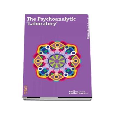 The Psychoanalytic -Laboratory- de Simona Reghintovschi