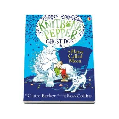 Knitbone Pepper Ghost Dog: A Horse called Moon